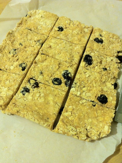 Fruity Oat Bars |xtinaluvspink.wordpress.com