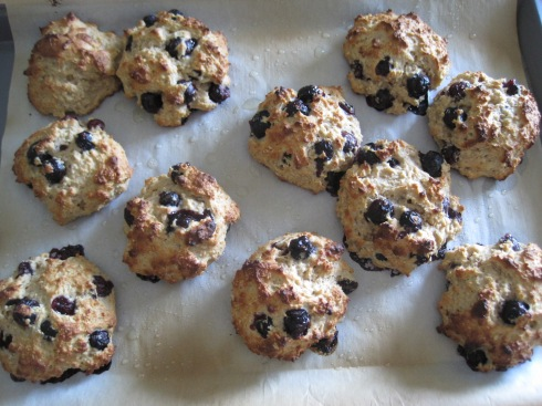 Blueberry Oat and Greek Yogurt Scones | xtinaluvspink.wordpress.com
