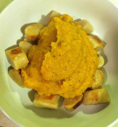 Butternut Squash Pasta Sauce | xtinaluvspink.wordpress.com