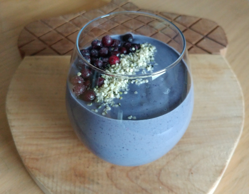 Wild Blueberry Avocado Protein Smoothie | xtinaluvspink.wordpress.com